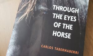 Book cover with horse eyes and title